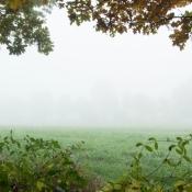 frame-the-mist-1210-ketliker-heide
