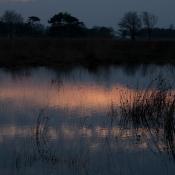 Whispering Water 1403 - 3645 #Delleboersterheide, Oldeberkoop